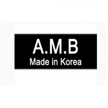 Korea AMB (15)